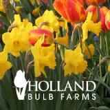 Holland Bulb Farms coupons