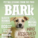 The Bark coupons