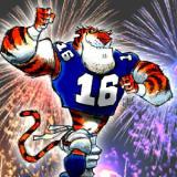 Tigerrags.com coupons