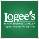 Logees Tropical Plants coupons