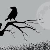 RavensMist coupons