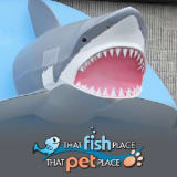 That Fish Place - That Pet Place coupons