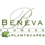 Beneva Flowers coupons