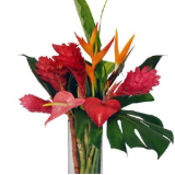 Blooms Of Hawaii coupons