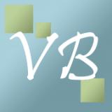 VisionBedding coupons