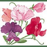 Renee's Garden coupons