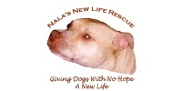 Nalas New life Rescue