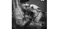 Service K9s for Disabled Veterans