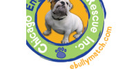 Chicago English Bulldog Rescue - CEBR