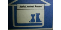 Bethel Animal Rescue