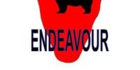 Endeavour Elementary PTO