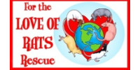 For The Love Of Rats Rescue