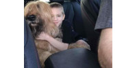 Help Damian get Service Dog for Autism