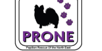 PRONE - Papillon Rescue Of the North East