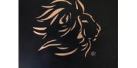 Lionshare A Discipleship Journey Children's Edition