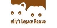Help Emily's Legacy Pet Rescue save cats and dogs in Wichita Falls, Texas