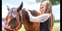 Massachusetts 4-H Horse Program