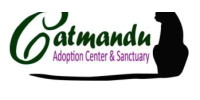Catmandu Carson City Cat sanctuary and adoptions