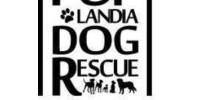 Puplandia Dog Rescue