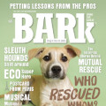 The Bark deals alerts