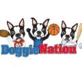 DoggieNation deals alerts