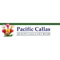 Pacific Callas deals alerts