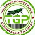 Grasshoppers deals alerts