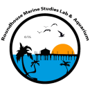 Oceanographic Teaching Stations - Roundhouse Marine Studies Lab and Aquarium