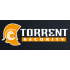 Torrent Security coupons and coupon codes