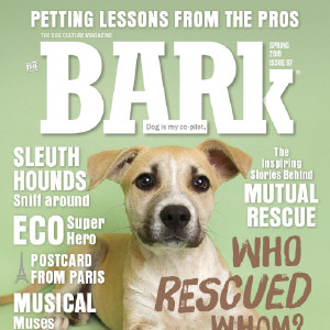 58% Off The Bark Coupons, Promo Codes, Aug 2019 - Goodshop