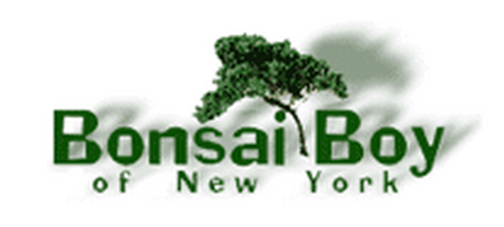 25% Off Bonsai Boy Of New York Coupons, Promo Codes, Oct 2018