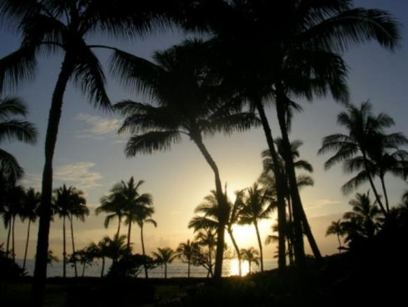 United-Airlines_Hawaii-Vacations_Maui-Oceanfront-Getaways-w/Air-Marked-Down