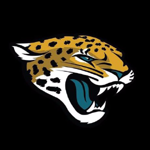 25% Off Jacksonville Jaguars Fan Shop Coupons, Promo Codes, Jul 2019  for sale