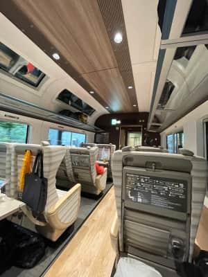 サフィール踊り子号にのる  グリーン車が1番下のシートという高級感ある電車...