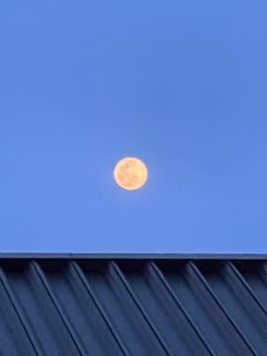 夜はザ満月、、 でも曇ってました😭