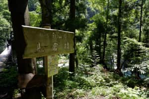 吊り橋めっちゃ怖かった。  橋までの道も細いし、急だし、ここを昔の小学生達...