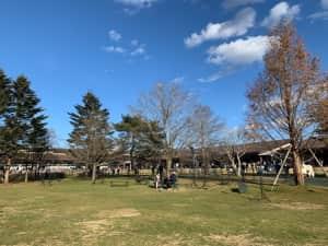 軽井沢プリンスショッピングプラザ。新幹線の駅を降りてすぐ目の前。犬も散歩で...