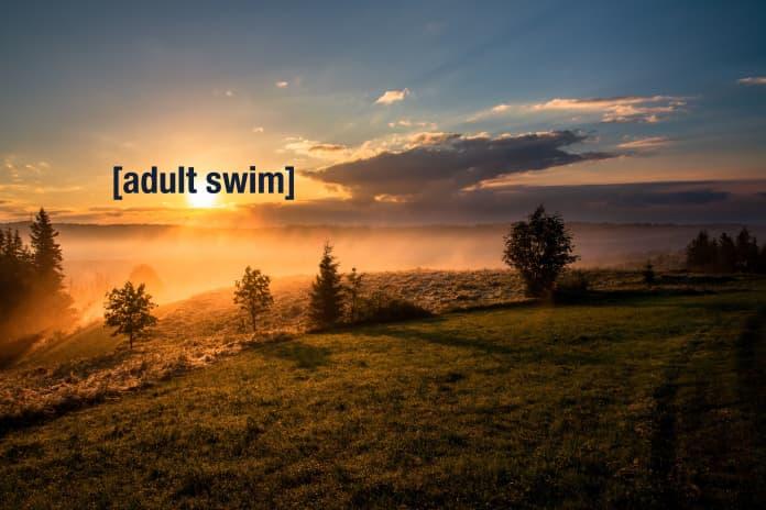 adult swim tiktok trend