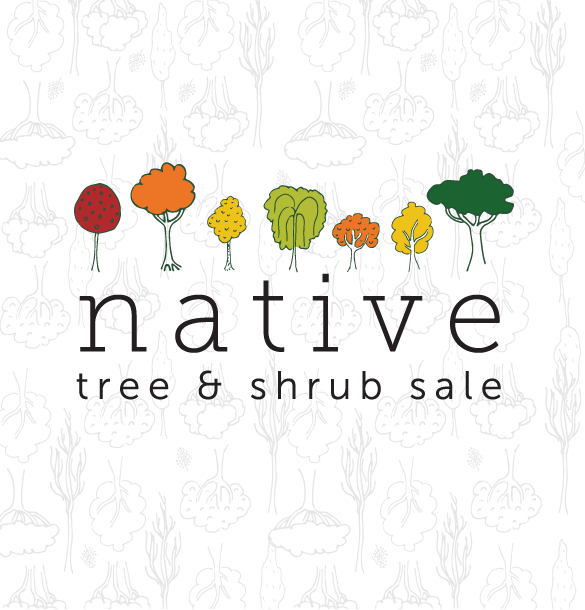 Native Tree & Shrub Sale