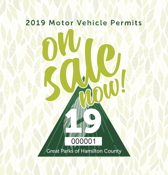 2019 Annual Motor Vehicle Permits