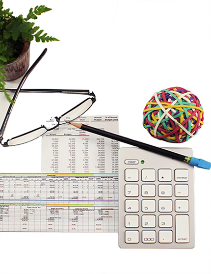 calculator, pencil, plant, glasses, rubber band ball, statement