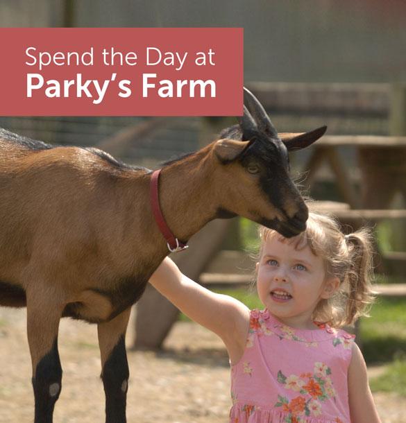 Parky's Farm