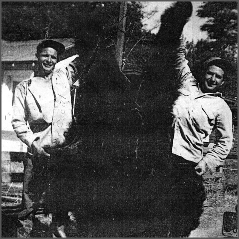 Cecil Phillips holding a black bear in Redwood, California.