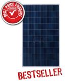 VIKRAMSOLAR ELDORA Ultima 275Wc Silver Poly module solaire img
