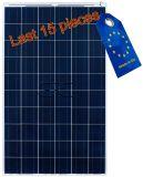 BISOL Premium BMU 270Wc Silver Poly module solaire img