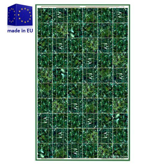 BISOL Spectrum BMU 255Wp Marble Green 5944 img