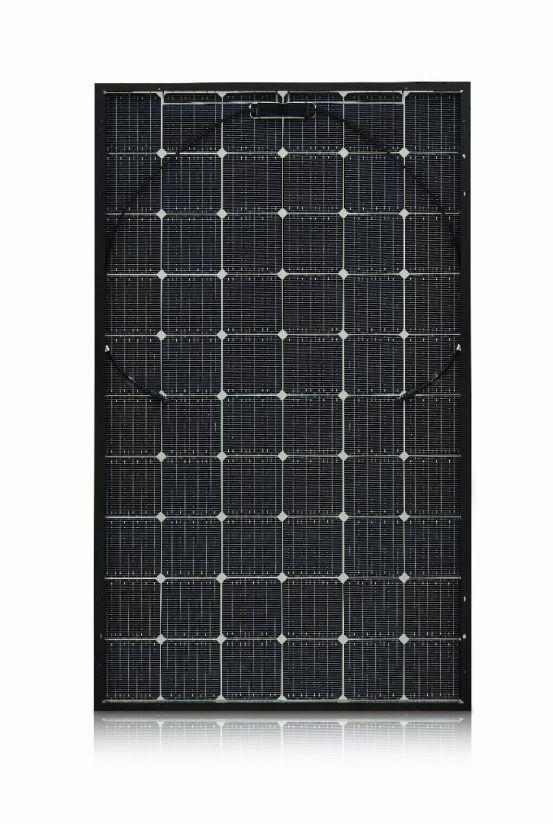 LG 335N1T-V5 NeON 2 Bifacial 10144 img