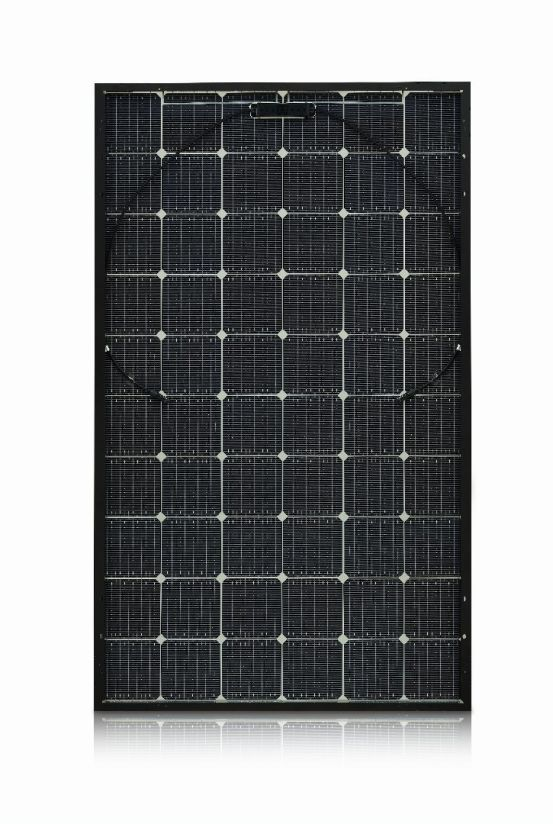 LG 335N1T-V5 NeON 2 Bifacial 10086 img