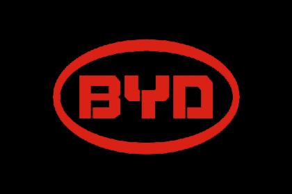 BYD img