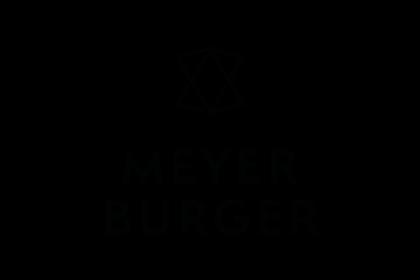 Meyer Burger img